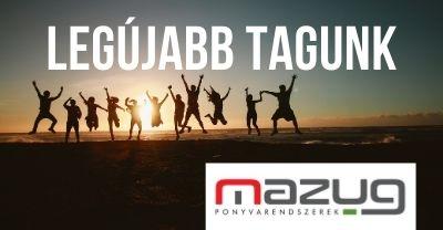 LEI Magyarországi Egyesülete tagság
