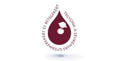 Tegyünk a leukémiás gyermekekért és betegekért alapítvány